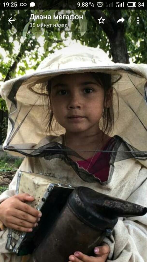 Опасные пчелы для детей