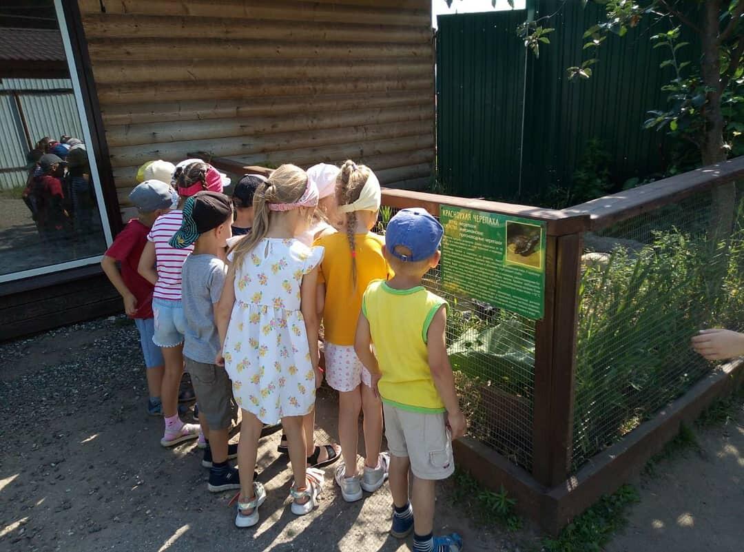 Экскурсия в зооуголок.